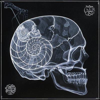 arte rayos X (23)