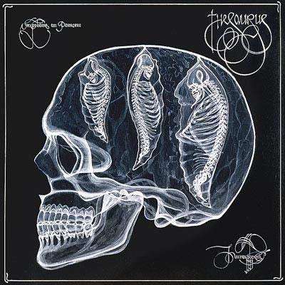 arte rayos X (22)