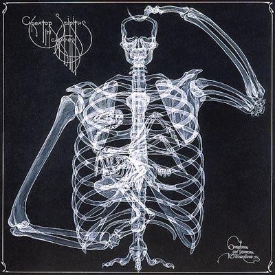 arte rayos X (17)