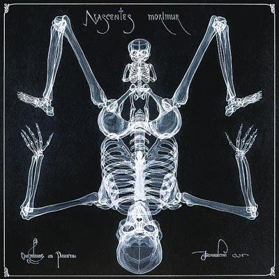 arte rayos X (14)
