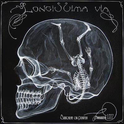 arte rayos X (13)