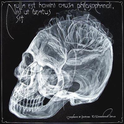 arte rayos X (8)