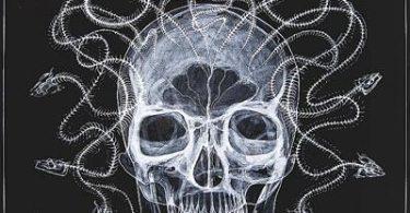 arte rayos X (7)