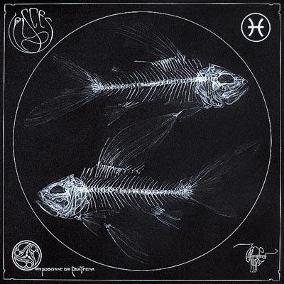 arte rayos X (3)