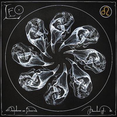arte rayos X (2)