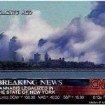 Se legaliza la marihuana en NY