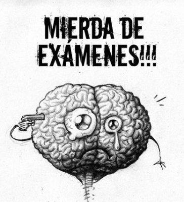 cerebrosuicide