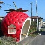 Paradas de autobús creativas.