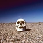 Acertijo: Esqueleto en el desierto.
