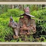bosque_encantado_imagen-11