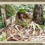 bosque_encantado_imagen-3