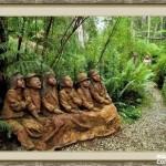 bosque_encantado_imagen-5