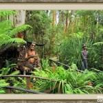 bosque_encantado_imagen-8