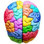 Ser más inteligente