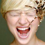 Las mujeres nacen con miedo a las arañas.