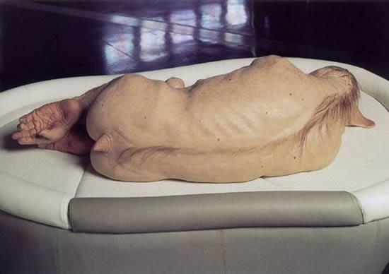 esculturas Patricia Piccinini (29)