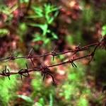 prision-gulag-stanlin-6