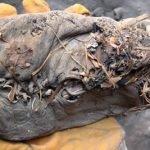 Un zapato de 5500 años de atiguedad
