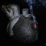 Best-anti-smoking-posters-009