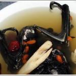 bat_soup_5