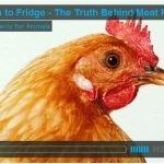 Pollos alimentados con arsénico hace décadas