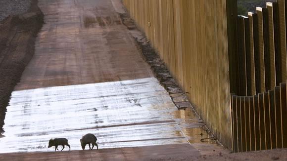 Muro Mexico EUA (25)