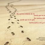 Frases Ilustradas (37)