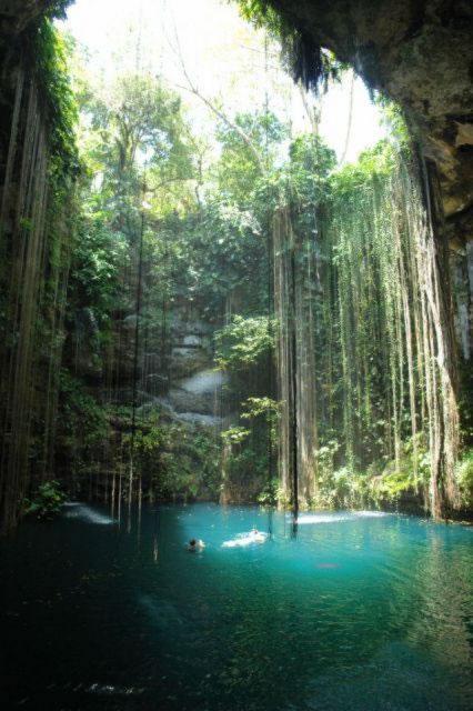 Cenotes Yucatan (15)