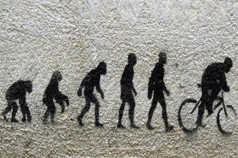 Evolucion gumana (11)