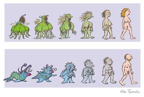 Evolucion gumana (10)