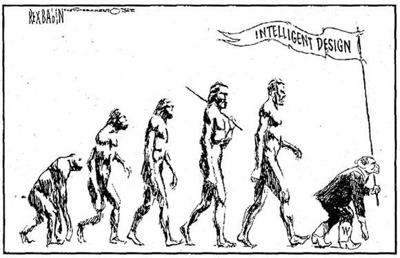 Evolucion gumana (14)