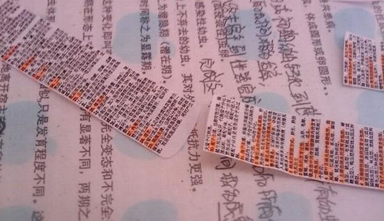 Acordeón examen made in China (17)
