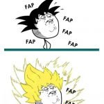 Fases del FAP