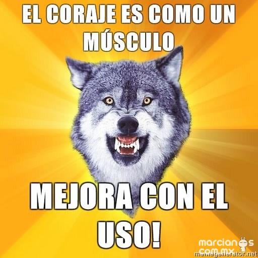 Consejos de Courage Wolf (16)