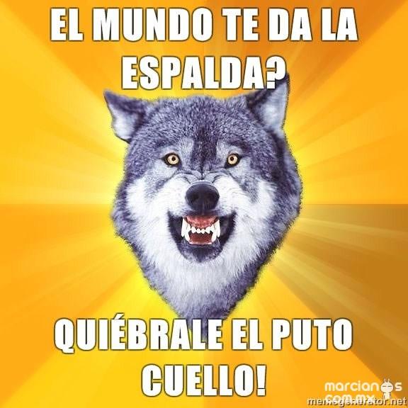 Consejos de Courage Wolf (15)