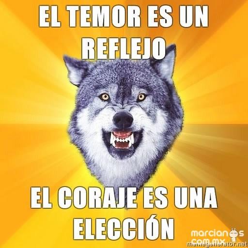 Consejos de Courage Wolf (14)