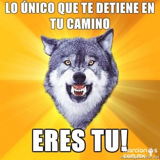 Consejos de Courage Wolf (9)