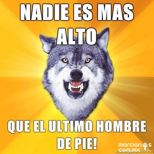 Consejos de Courage Wolf (7)