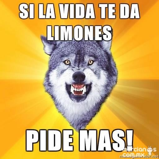 Consejos de Courage Wolf (4)