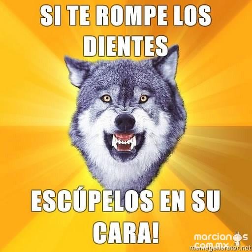 Consejos de Courage Wolf (2)