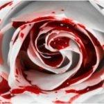 La Rosa de Guadalupe inspira cómo morir a niña de 10 años