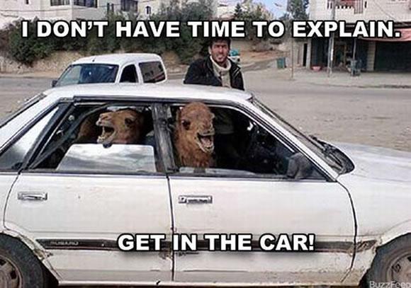 No hay tiempo para explicar (6)