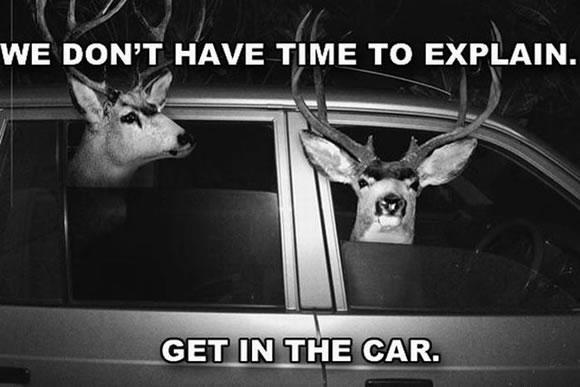 No hay tiempo para explicar (3)