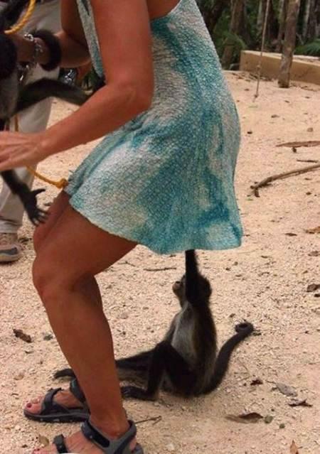 mujeres vs animales (6)
