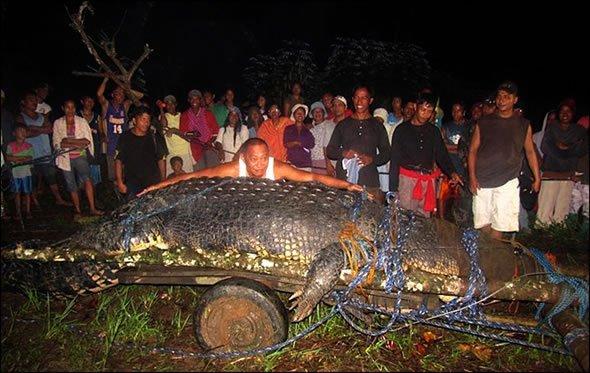 Cocodrilo Gigante Filipinas