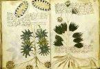 El Manuscrito Voynich: