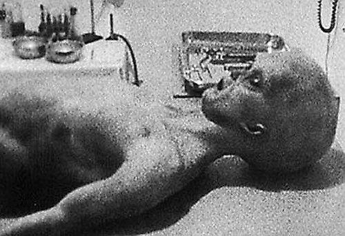 Fotos de extraterrestres supuestamente reales (temático)