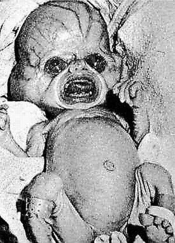 Fotos de extraterrestres reales (3)