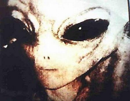 Fotos de extraterrestres reales (7)