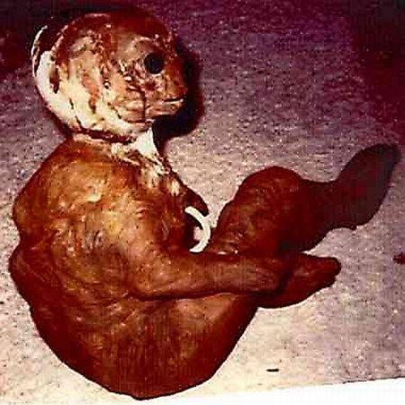 Fotos de extraterrestres reales (9)